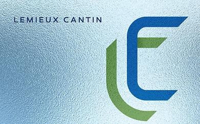 Work Lemieux Cantin.jpg