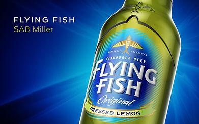 Work for Flying Fish Concept.jpg