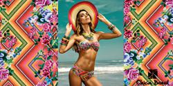 Verão Chica Brasil