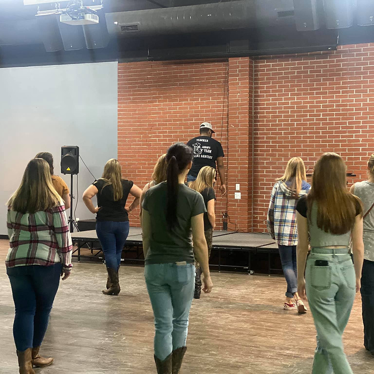 Beginner Line Dance Session