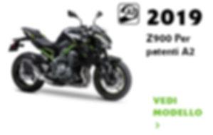 Z900modelli.jpg