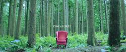 CGV 'Cine and Forêt'