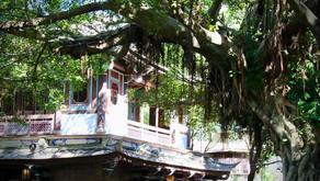 Villa e giardini della famiglia Lin