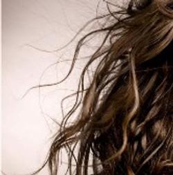 洗髮、護髮