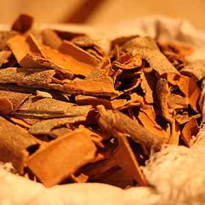 錫蘭肉桂 (皮) 精油 ~ 傳統栽種