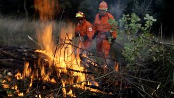 Prevenzione degli incendi ad Alberobello