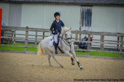 pony club 8