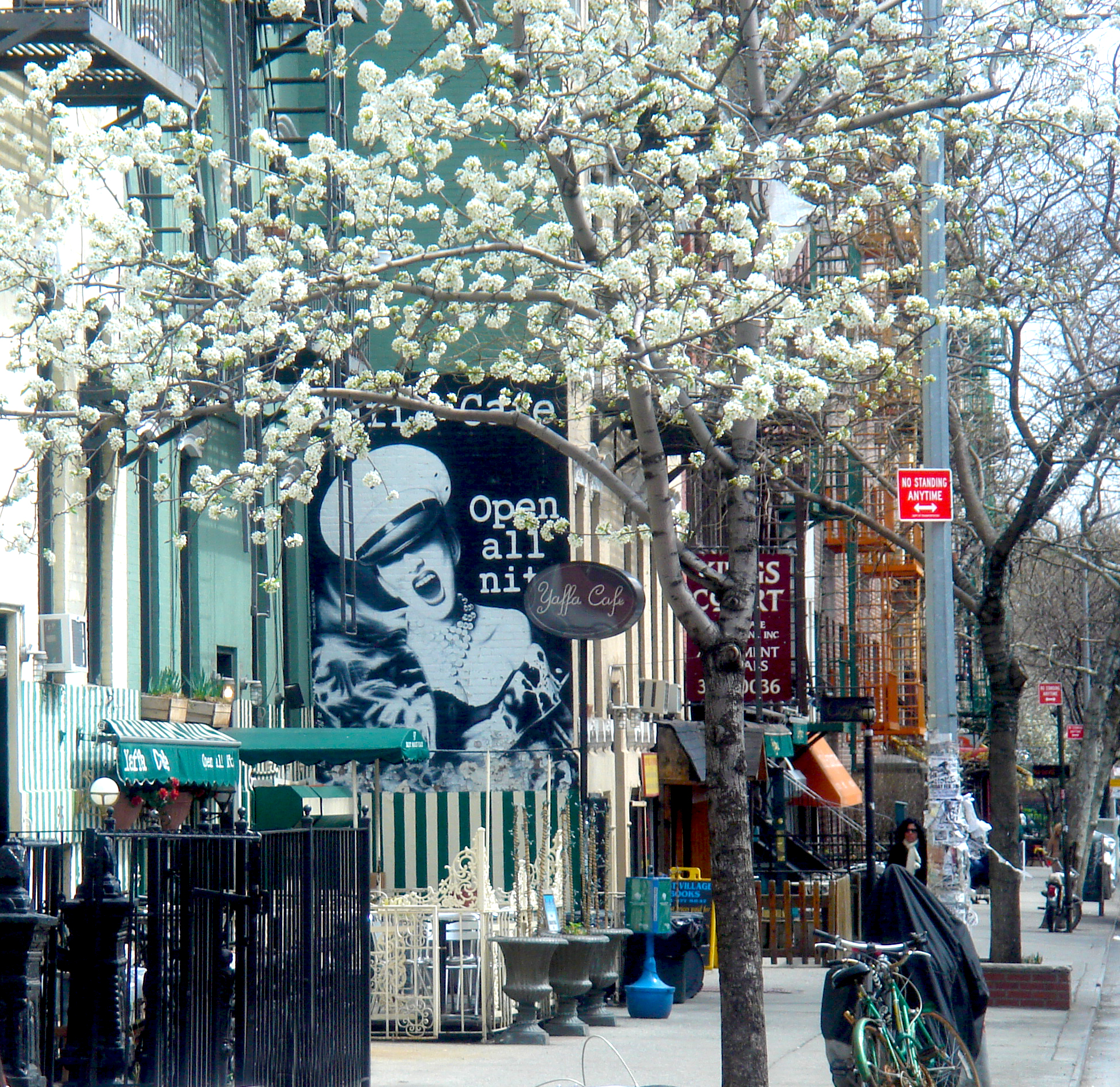 Yaffa_Cafe_new_york_spring_time