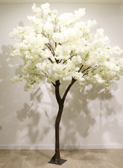 freestanding 2.7metre ivory cherry