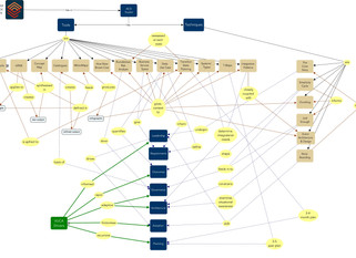 Adaptive Change Design - A Concept Map