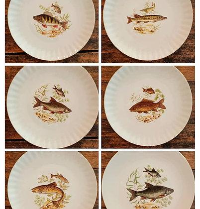 Bavaria Balıklı Porselen Tabak(Çap:24cm)