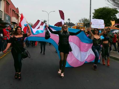 Diversidad sexual y de género: por una Constitución diversa.