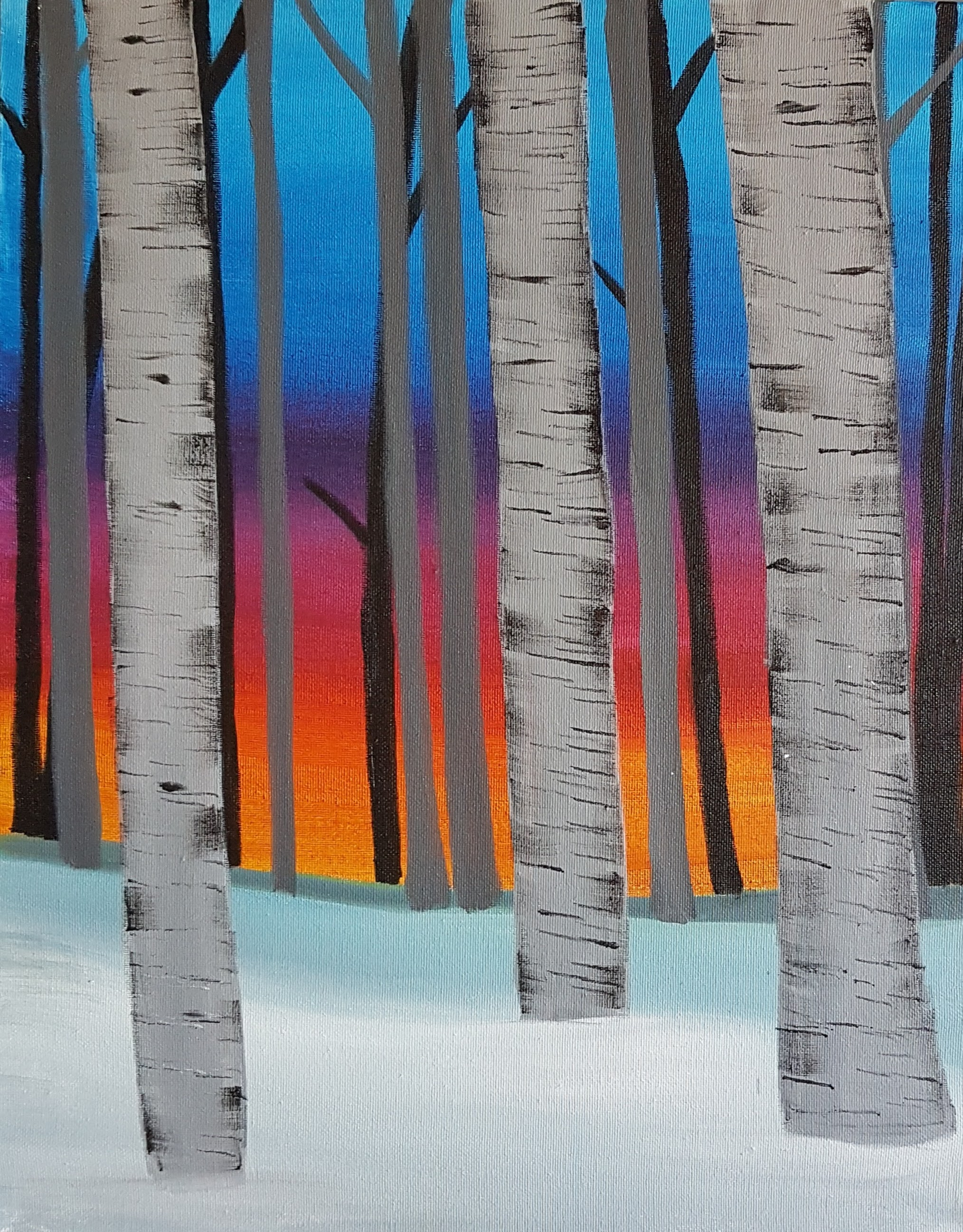 Winter Birch Sunset