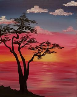 Bonsai Tree Sunset