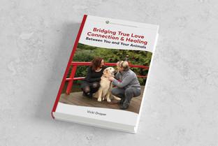 Bridging True Love Connection & Healing book