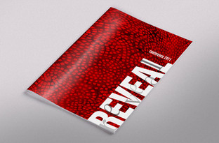 Reveal Conference program