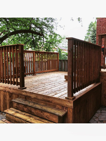 Step%20right%20up!%20Another%20backyard%