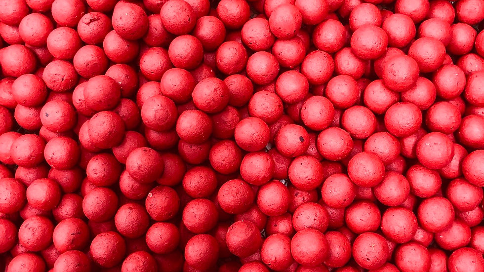 Red Maggot Boilies