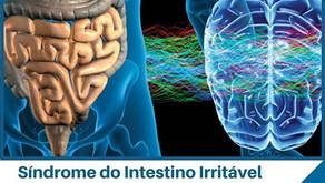Síndrome do Intestino Irritável Como a conexão do intestino com o cérebro pode influenciar?