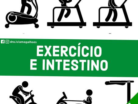 Como o exercício físico pode influenciar a microbiota intestinal