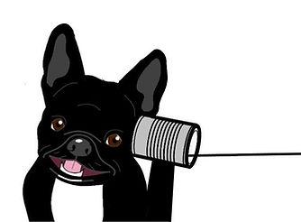 phone dog.jpg