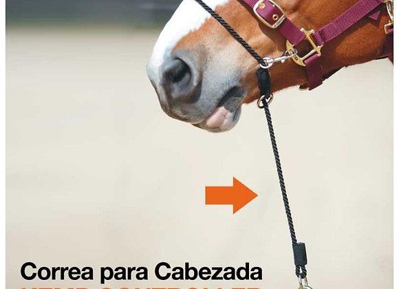"""CORREA PARA CABEZADA """"KEMP CONTROLLER"""""""