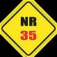 NR35.png