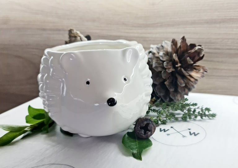 Customize Your Own Hari Hedgehog - 400ml Soy Wax Candle