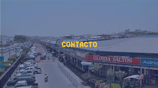 CONTACTO-PECA.png