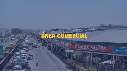 AREA-COMERCIAL-PECA.png