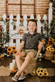 Sunflower Mini Session