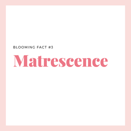 Matrescence: A Transition Into Motherhood