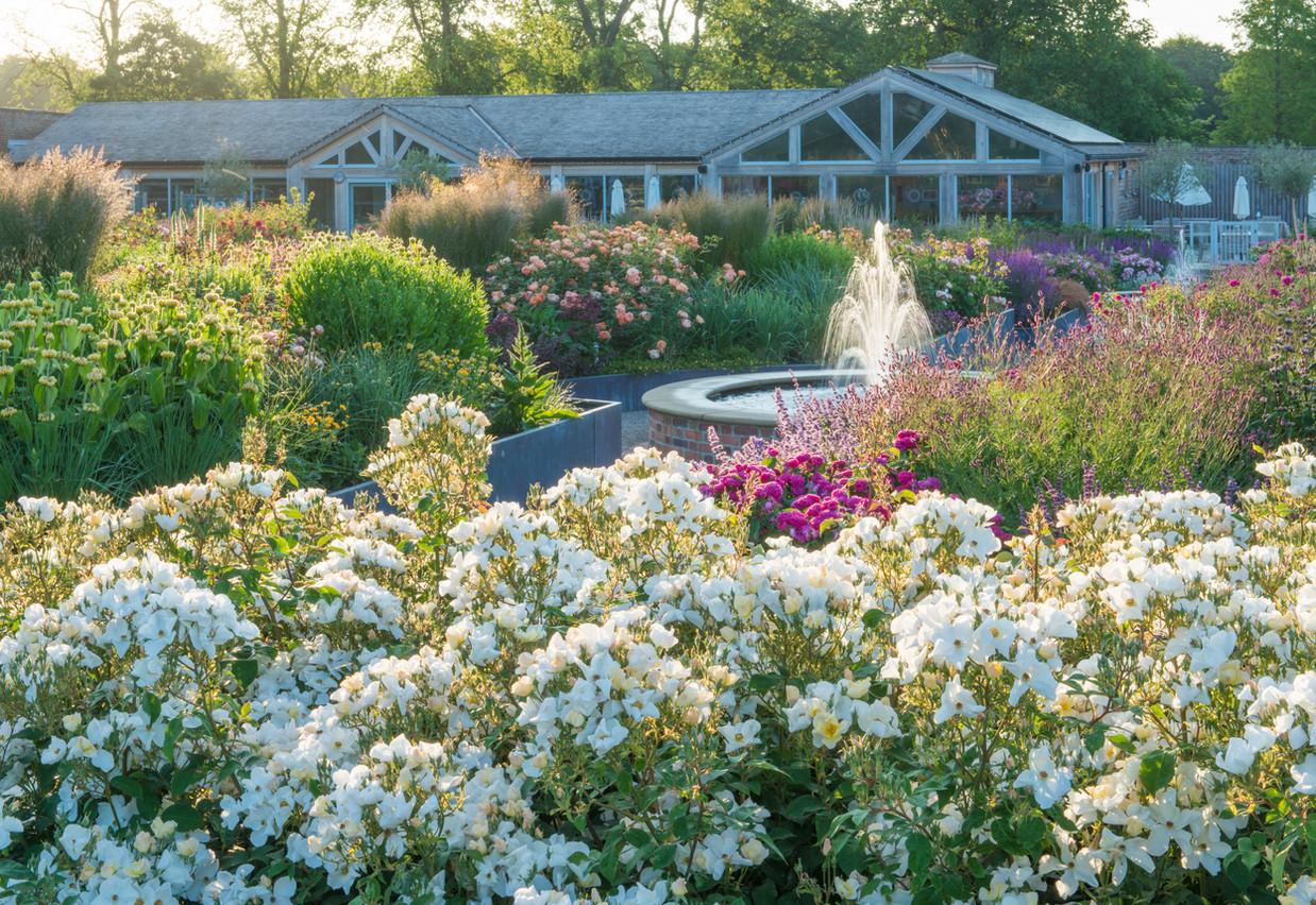 'Kew Gardens'_17A4729.jpg