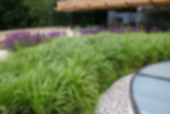 Contemporary roof garden yorkshire, modern, pebble path, perennial planting