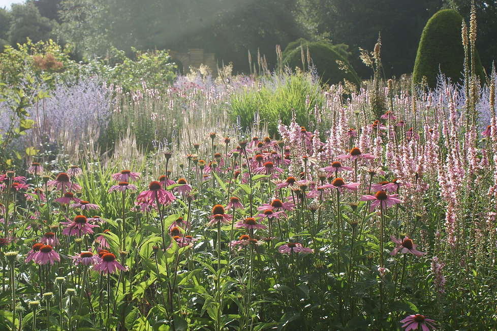 Swathes of perennial planting at the restored gardens at Bowcliffe Hall