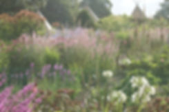 Swathes of perennial planting at Bowcliffe Hall near the new Blackburn Wing