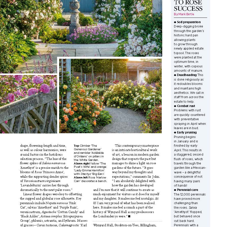 Wynyard Hall Rose Garden, designed by Alistair Baldwin, The English Garden Magazine, Page 7