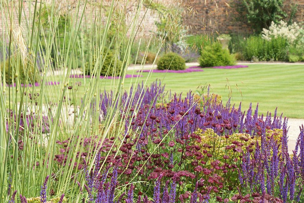 Perennial planting, arch path wisteria and lawn walled garden yorkshire Alistair Baldwin