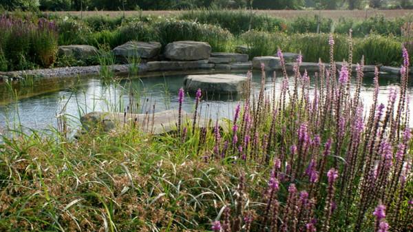 Country Pool Garden