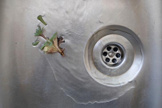 Sink#10