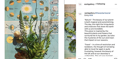 plants flowers travel instagram