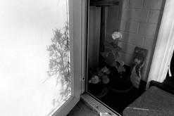 Door - Week 4