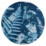 Cyanotype_04.jpg