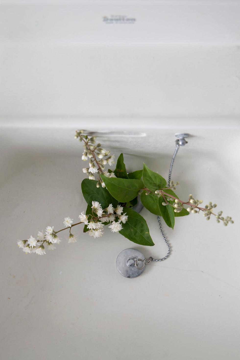 Sink#50