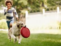 child-with-dog.jpg
