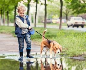 Boy Walking Dog.jpg
