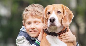 Kids-and-dogs-2.jpg