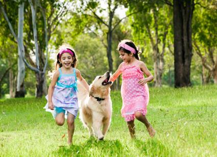 SS-Dogs-and-kids-hero-96524833.jpg