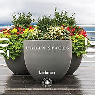 2020_Urban_Spaces.jpg