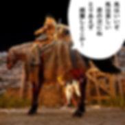 黒い砂漠の野生馬捕獲手順と5世代馬の特徴と画像